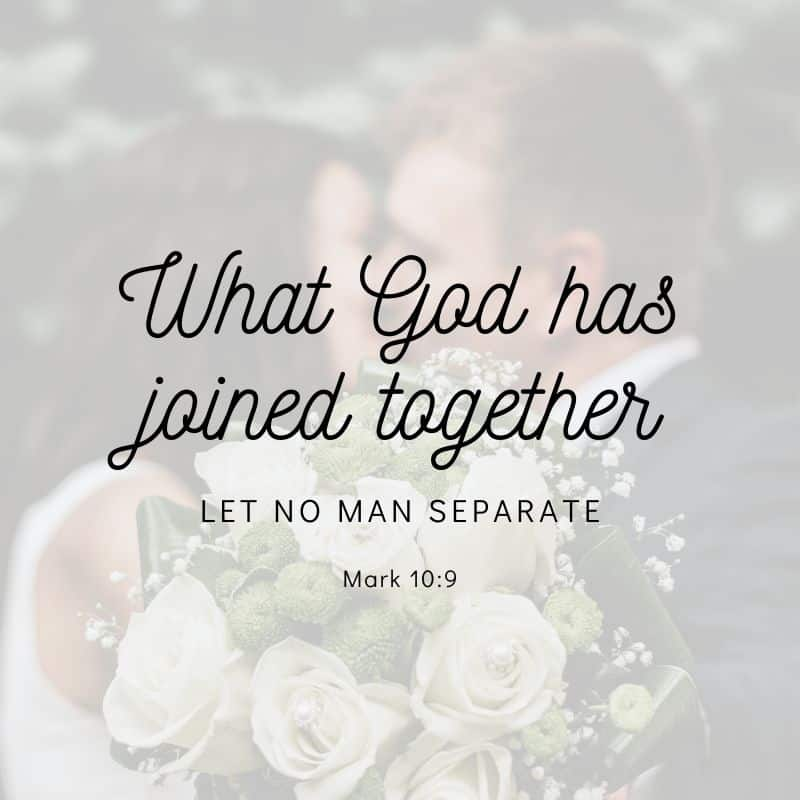 What God has joined together let no man separate. Love quote