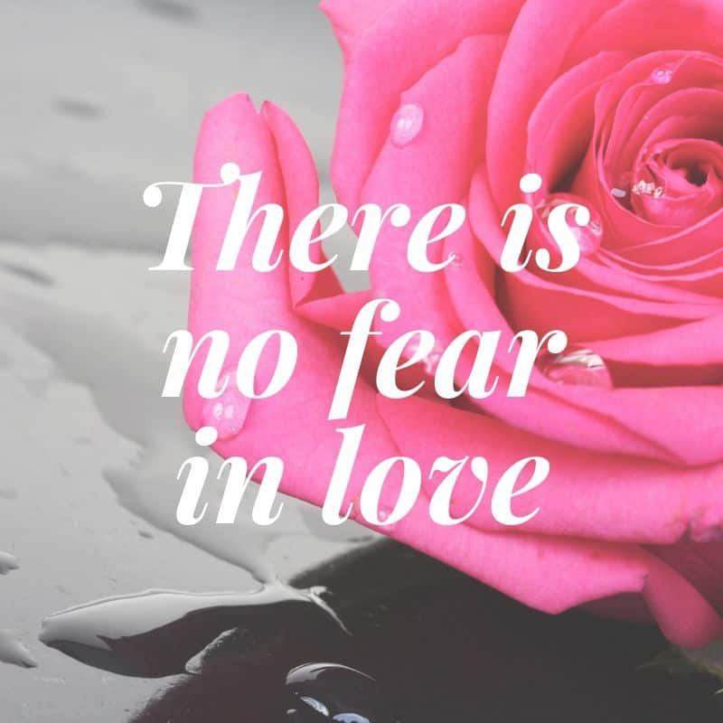 There is no fear in love Bible love quote